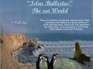 """Islas Ballestas""  The sea World"