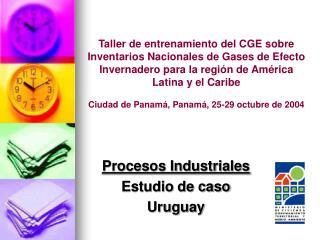 Procesos Industriales Estudio de caso  Uruguay