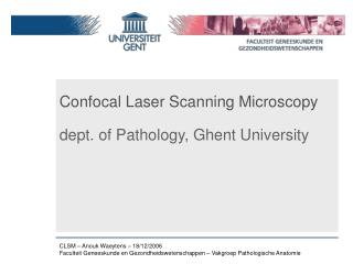Confocal Laser Scanning Microscopy