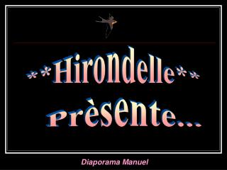 **Hirondelle**