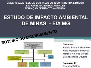 ESTUDO DE IMPACTO AMBIENTAL DE MINAS  - EIA MG