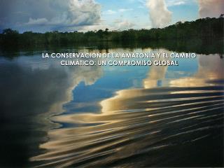 LA CONSERVACI N DE LA AMAZON A Y EL CAMBIO CLIM TICO: UN COMPROMISO GLOBAL