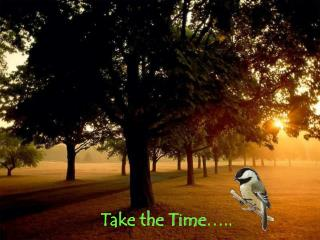 Take the Time …..
