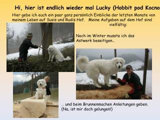 Hi, hier ist endlich wieder mal Lucky (Hobbit pod Kocno)