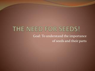 THE NEED FOR SEEDS!
