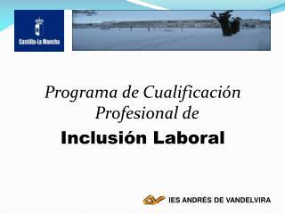 Programa de Cualificación Profesional de  Inclusión Laboral