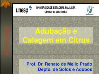 Prof. Dr. Renato de Mello Prado Depto. de Solos e Adubos