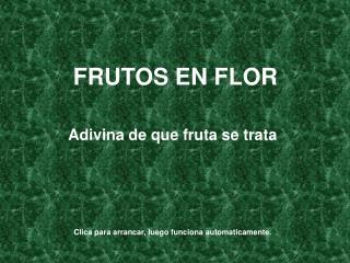 FRUTOS EN FLOR