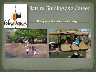 Nature Guiding as a Career