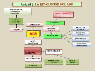 Unidad 5:  La revolución del ADN