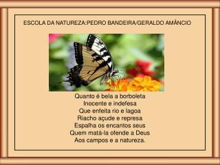 ESCOLA DA NATUREZA:PEDRO BANDEIRA/GERALDO AMÂNCIO