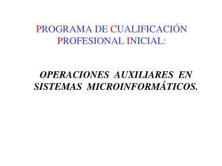 P ROGRAMA DE  C UALIFICACIÓN  P ROFESIONAL  I NICIAL: