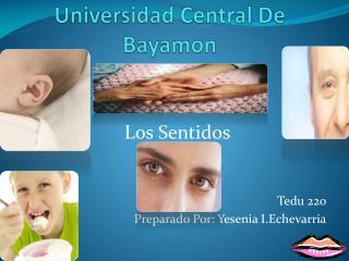 Universidad Central De Bayamon
