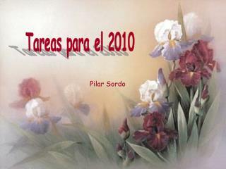 Tareas para el 2010