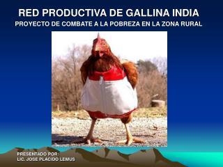 RED PRODUCTIVA DE GALLINA INDIA PROYECTO DE COMBATE A LA POBREZA EN LA ZONA RURAL