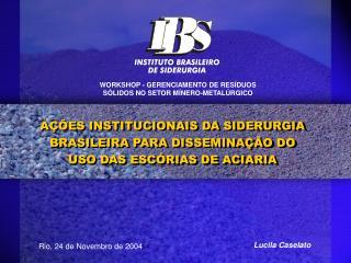 AÇÕES INSTITUCIONAIS DA SIDERURGIA BRASILEIRA PARA DISSEMINAÇÃO DO USO DAS ESCÓRIAS DE ACIARIA