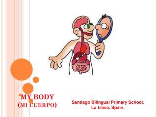 MY BODY (mi cuerpo)