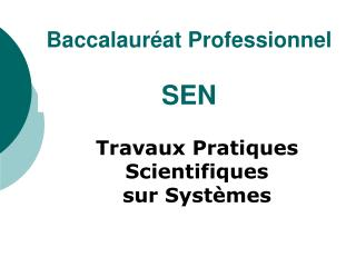 Baccalaur�at Professionnel  SEN
