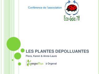 LES PLANTES DEPOLLUANTES