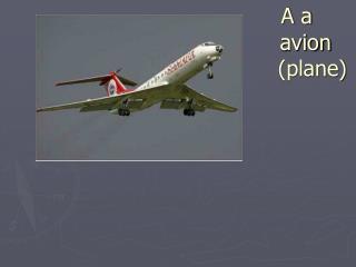 A a                                 avion                                  (plane)