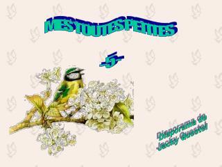 MES TOUTES PETITES - 5 -