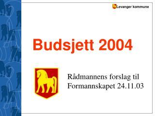 Budsjett 2004