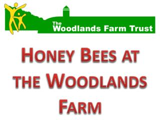 Honey Bees at the Woodlands Farm