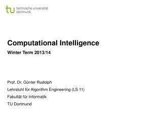 Computational Intelligence Winter Term  2013/14