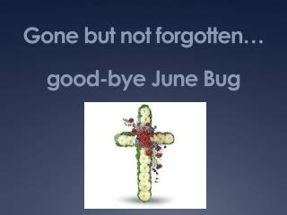 Gone but not forgotten… good-bye June Bug