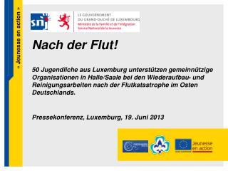 Pressekonferenz, Luxemburg, 19. Juni 2013