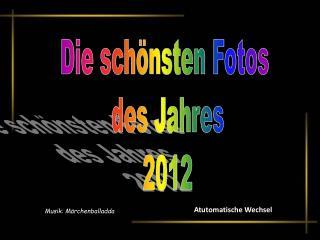 Die schönsten Fotos  des Jahres  2012