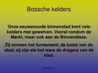 Bossche kelders