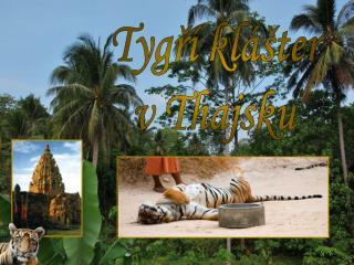 Tygří klášter v Thajsku