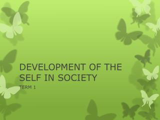 DEVELOPMENT OF THE SELF IN SOCIETY