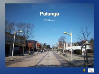 Palanga 2013 kovas