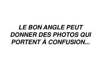 LE BON ANGLE PEUT DONNER DES PHOTOS QUI PORTENT À CONFUSION...