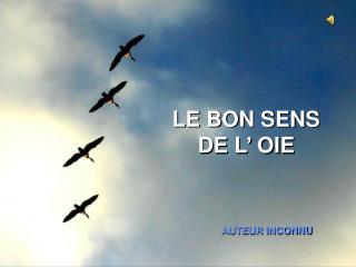 LE BON SENS DE L' OIE