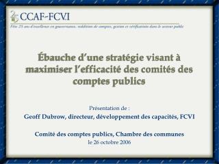 Ébauche d'une stratégie visant à maximiser l'efficacité des comités des comptes publics