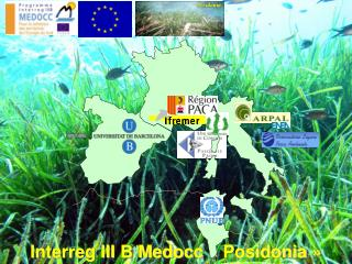 Interreg III B Medocc «Posidonia»