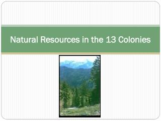 Natural Resources in the 13 Colonies