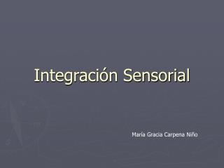 Integraci n Sensorial
