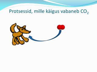 Protsessid, mille käigus vabaneb CO 2