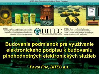 Budovanie podmienok pre vyu  vanie elektronick ho podpisu k budovaniu plnohodnotn ch elektronick ch slu ieb   Pavol Fric