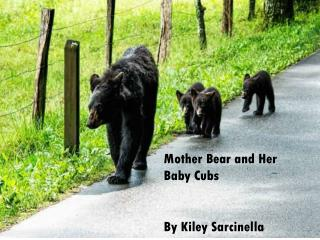 Mother Bear and Her Baby Cubs  By Kiley Sarcinella
