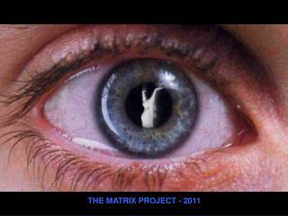 THE MATRIX PROJECT - 2011