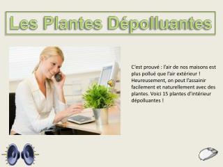 Les Plantes D�polluantes