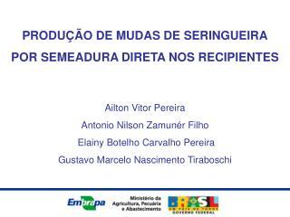 PRODU��O DE MUDAS DE SERINGUEIRA POR SEMEADURA DIRETA NOS RECIPIENTES Ailton Vitor Pereira