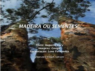 Texto: Augusto Cury Imagens: Google Formatação: Lene Fernandes Clique para avançar, com som
