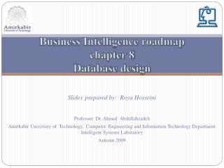 Business Intelligence roadmap chapter 8 Database design