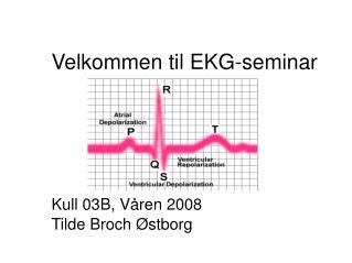 Velkommen til EKG-seminar       Kull 03B, V ren 2008 Tilde Broch  stborg